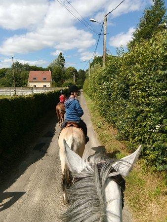Vitot, França: Promenades tous âges et tous niveaux, circuits adaptés à chaque niveau