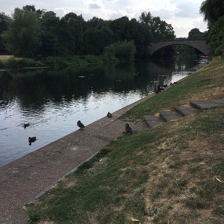 Lovely park beside the river