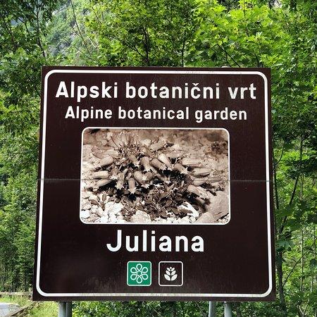 Slovenian Littoral Region, Slovenia: photo1.jpg