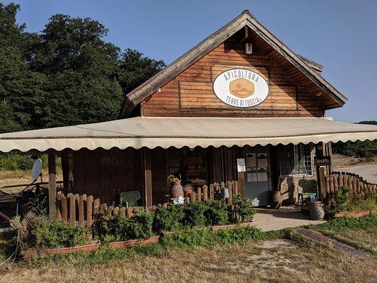 Terre di Tuscia - Azienda Agricola Apicoltura