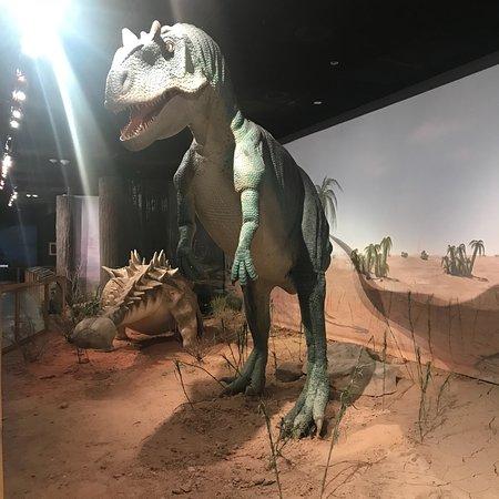 Las Vegas Natural History Museum Las Vegas Nv