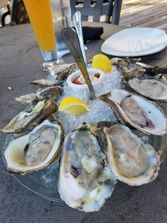 Landry's Seafood House: I ordered oysters any opportunity I got. These were good