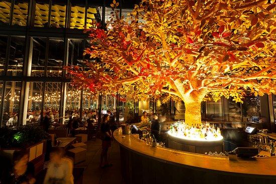 Resultado de imaxes para Sushisamba Bar london