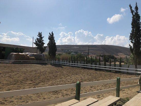 Riding Academy of Crete - Ippikos Riding Club Εικόνα