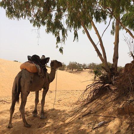 Lompoul, Senegal: photo1.jpg