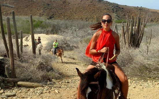 Santa Cruz, Aruba: Horseback Riding at Rancho Daimair