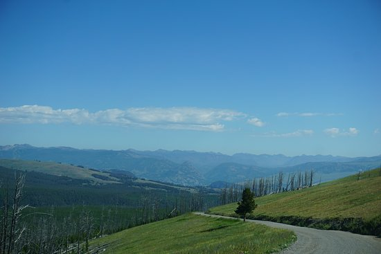 View from Chittendom Rd on Mount Washburn