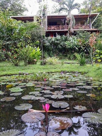 Isla San Cristobal, Panama: ❤️