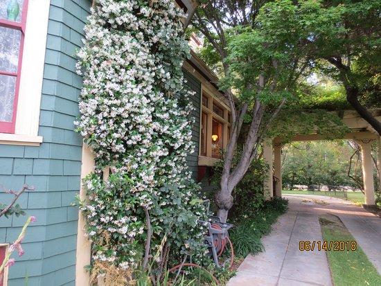 South Pasadena, Califórnia: Side grounds
