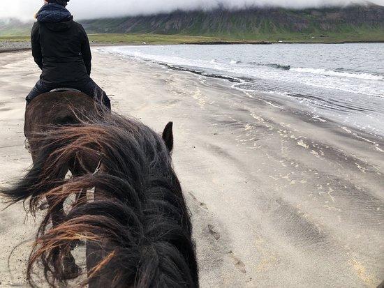 Skagafjordur, Исландия: photo2.jpg