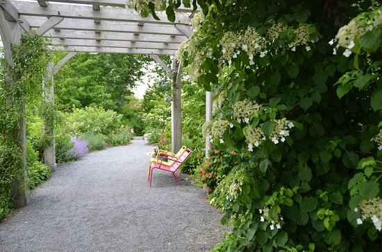 Coastal Maine Botanical Gardens: The Arbor Garden