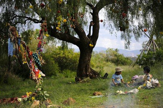 Sustainable Bolivia: Locales comunities