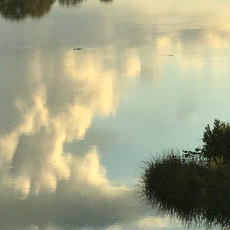 Fort Meade, Флорида: photo4.jpg