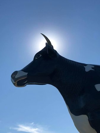 New Salem, Северная Дакота: Salem Sue in the Sun
