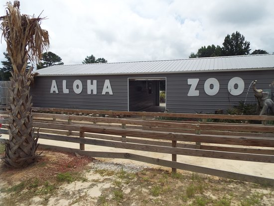 Aloha Safari Zoo: THE START
