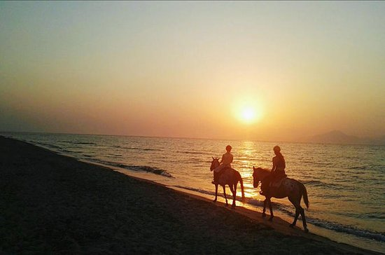 Sunset Horse Ride med grill