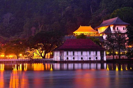 Kandy City Tour com Orhanage de...