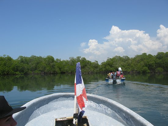 Paradise Island & The Mangroves (Cayo Arena): Riding through the mangroves