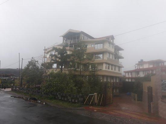 Coniferous Hotel