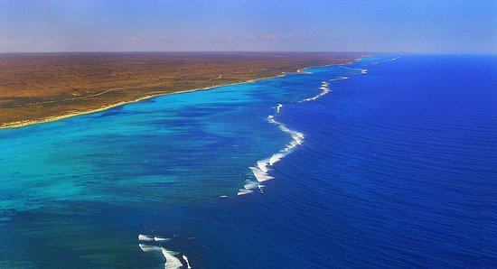 Ningaloo Game fishing Charters: Gamefishing grounds, immediately off the back of the Ningaloo Reef