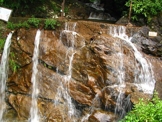 Maskeliya, Σρι Λάνκα: مناظر لطيفة!