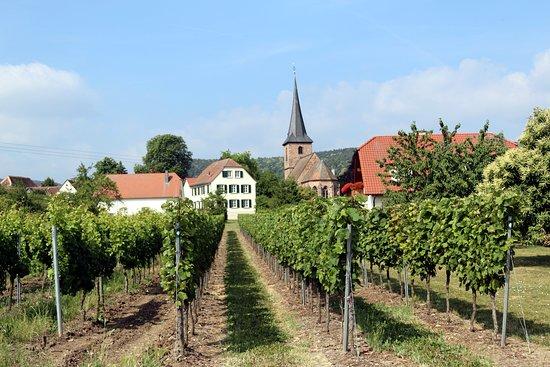 Weisenheim Berg