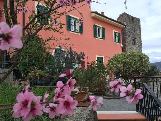 B&B Villa Ginestra