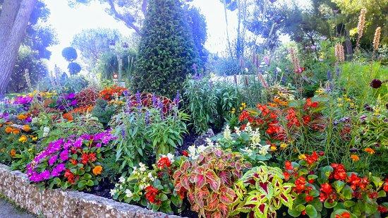Princess Grace Botanical Garden Photo