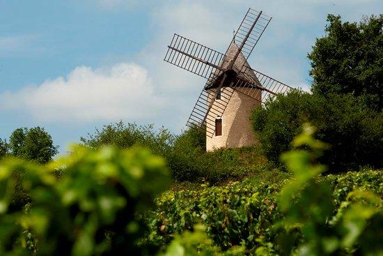 Beaune, Francia: getlstd_property_photo