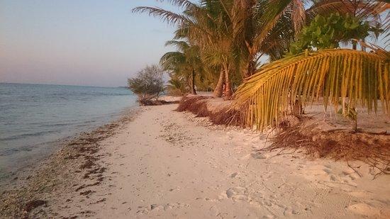 Bodufinolhu Island Foto