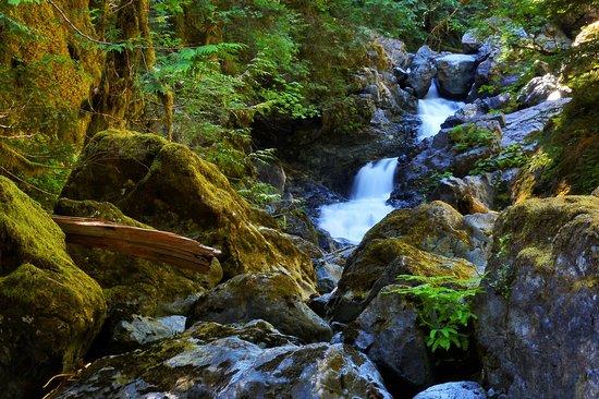 Rosewall Creek Provincial Park