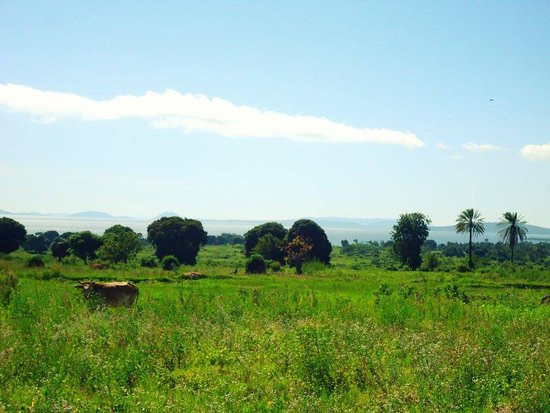 Mwanza, Tanzania: Along the bike route
