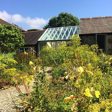 St Hilary, UK: Luxurious wild gardens.