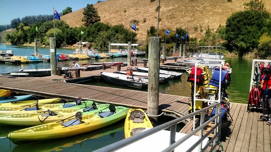 Castro Valley, Калифорния: Marina with boats and kayaks