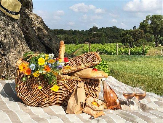 Bormes-Les-Mimosas, فرنسا: Vous pouvez réserver votre panier pique-nique dans les vignes ( 48 H à l'avance, 24euros/ pers )