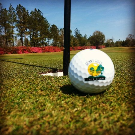 Chipley, FL: Hole #5 Azaleas in bloom
