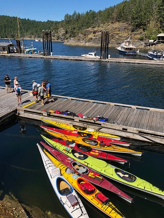 Powell River Sea Kayak - All You Need to Know BEFORE You Go