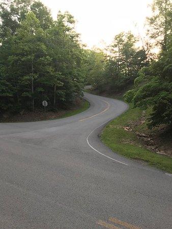 Pineville Bild