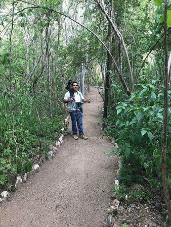Cornelio's Nature Preserve/Property