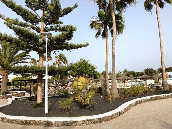 Elba Lanzarote - Great hotel for family!