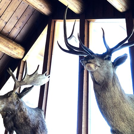 Condon, Монтана: photo3.jpg