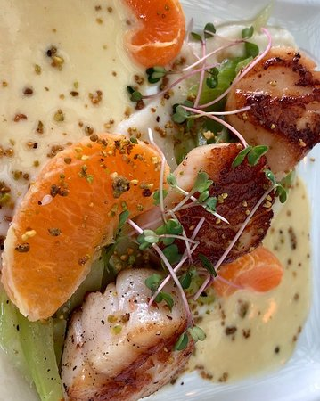 John Ash & Co Restaurant: Scallops: ridiculously delicious and beautiful