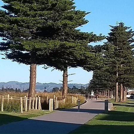 Oneroa cycle/walkway. Gisborne. Includes some cultural aspects and one day will have story board