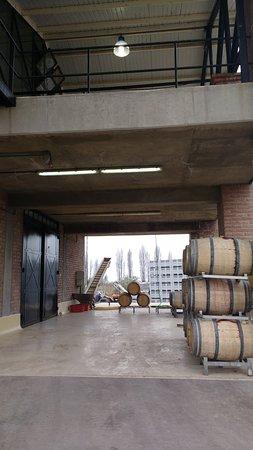 Bodega Achaval Ferrer: barricas de carvalho