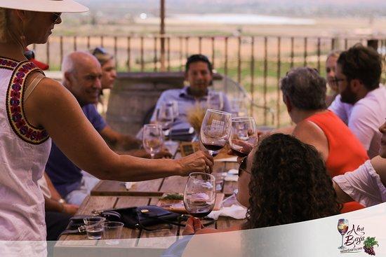Aha Baja Wine Tours