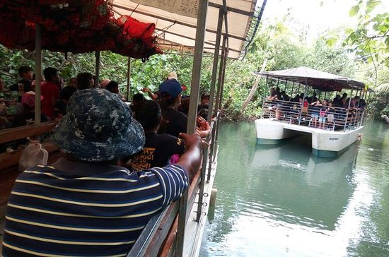 Jungle Riverboat Adventure Cruise i...