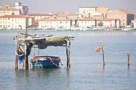 Sottomarina, Italia: Laguna del Lusenzo