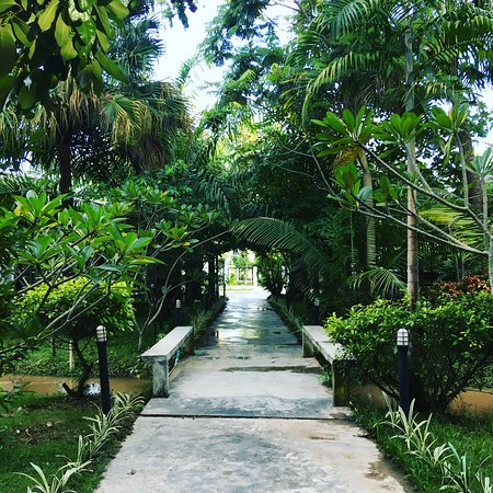 Bangarang Muay Thai and Fitness Camp Chiang Mai: way to my villa inside the gym
