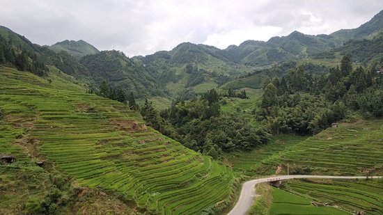 Congjiang County, China: Jiabang Terraces