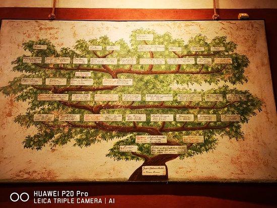 Puccini Museum - Casa natale: IMG_20180727_105312_large.jpg
